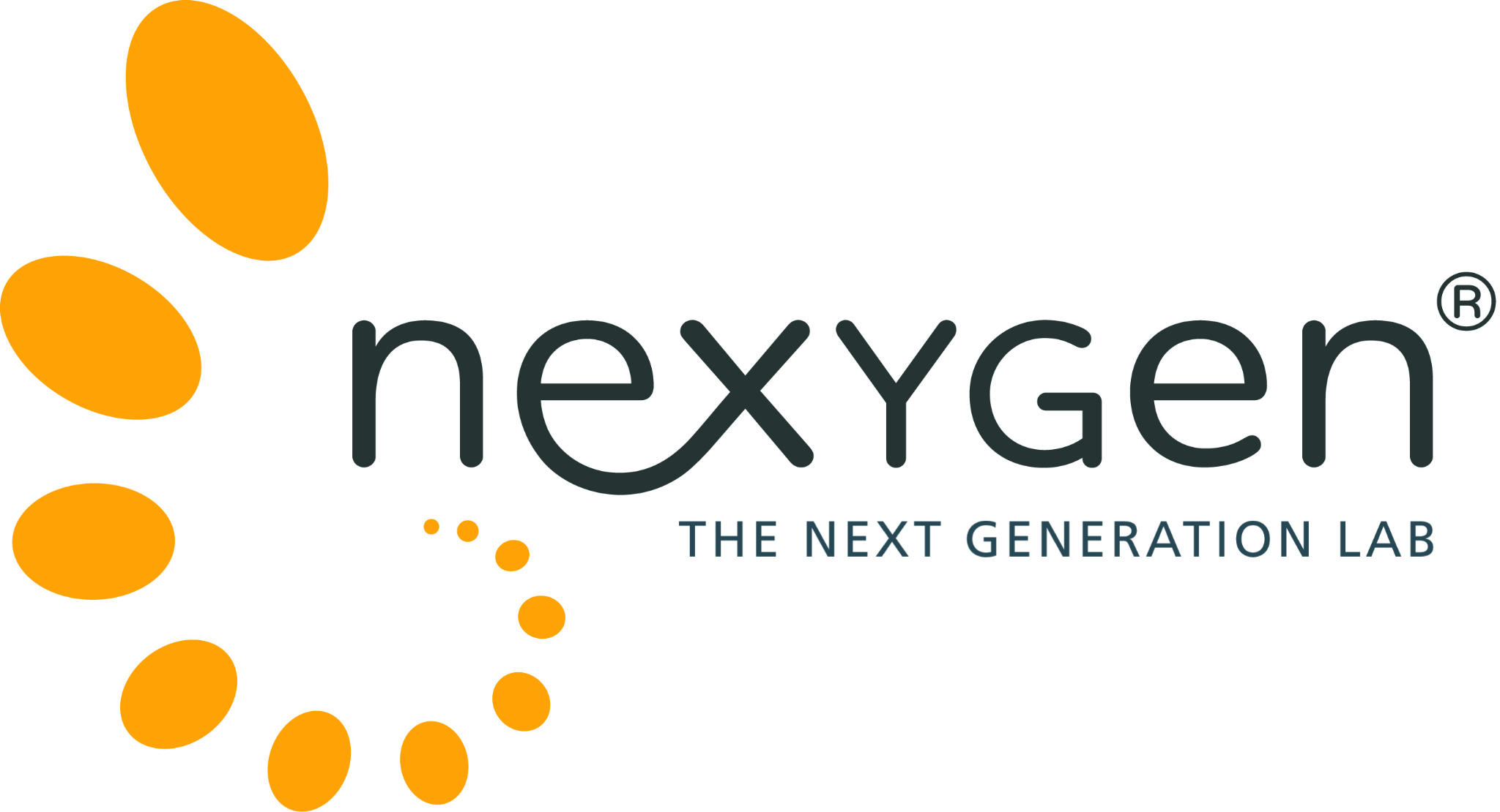 20160302 nexygen Logo ms